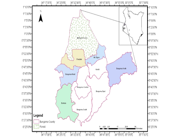 Factors Contributing To Low Productivity and Food Insecurity in Bungoma County, Kenya